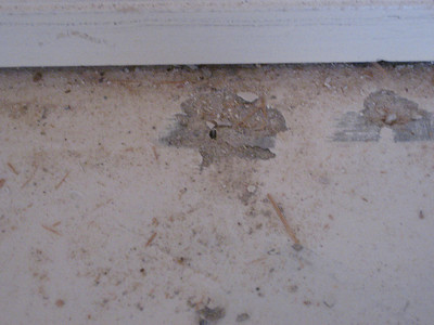 Small divots left in concrete after removing carpet tack board.