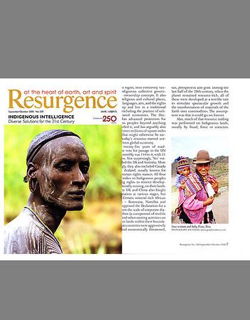 Resurgence Magazine (U.K), September/October 2008