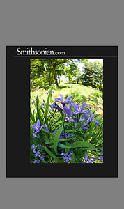 Smithsonian Magazine - Story on Bartram's Garden (April 2011)