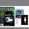 Birder's World Magazine (August 2002)