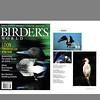 Birder's World Magazine (August 2002)