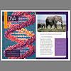 DNA (Textbook)
