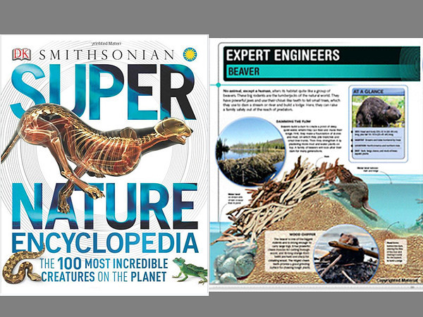 Super Nature Encyclopedia  (Published 2012)