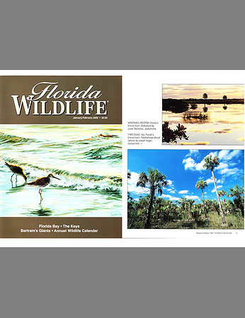 Florida Wildlife Magazine (February 2003)