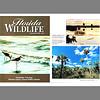 Florida Wildlife Magazine (February 2003)