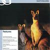 SmithsGore Brochure (U.K.) - Cover Image