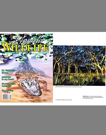 Florida Wildlife Magazine (January/February 2001)