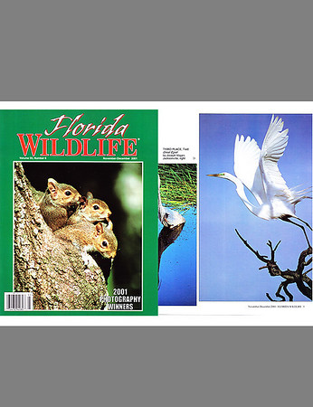 Florida Wildlife Magazine (December 2001)