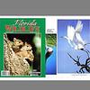 Florida Wildlife Magazine (December 2001)