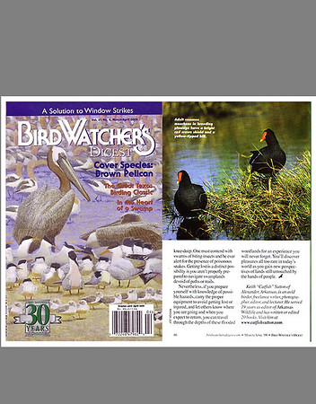 Birdwatcher's Digest (March/April 2009)