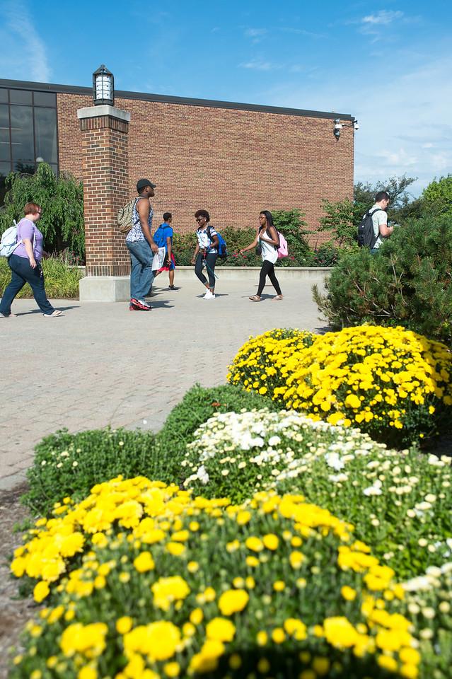 Summer campus scenes