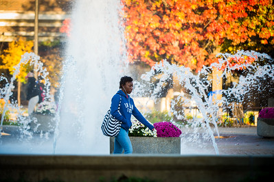 Campus scenes fall