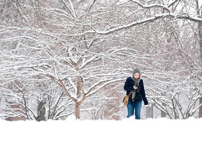 01_11_10_snowfall-0111