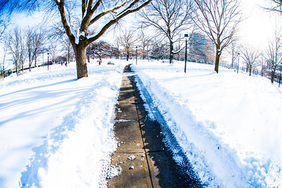 Winter snowfall 2015