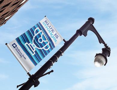 flag-pole2