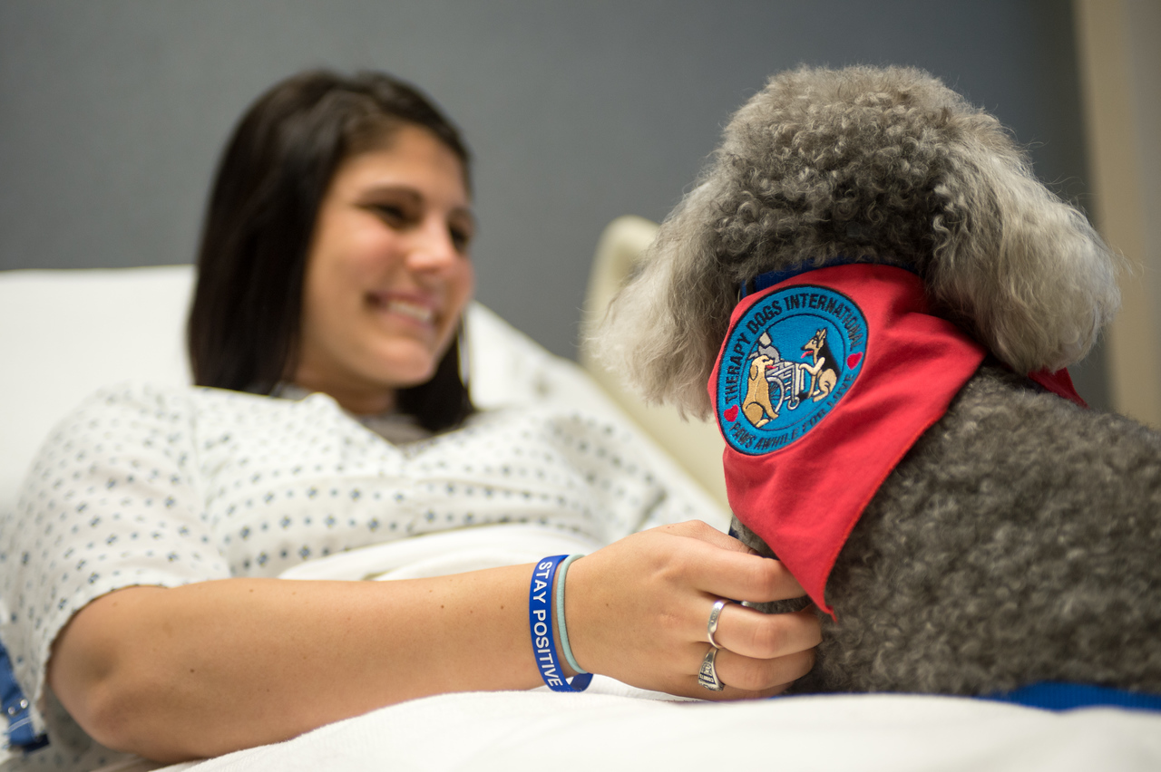Therapy Dog Moe