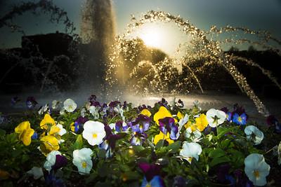 04_30_13_fountain-7395-3022185123-O