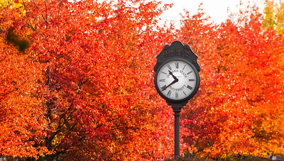 Fall campus scenes in Fall of 2013