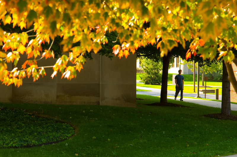 2006_fall_foliage_walkway_0001