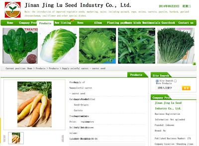 Jinan Jing - Carrots