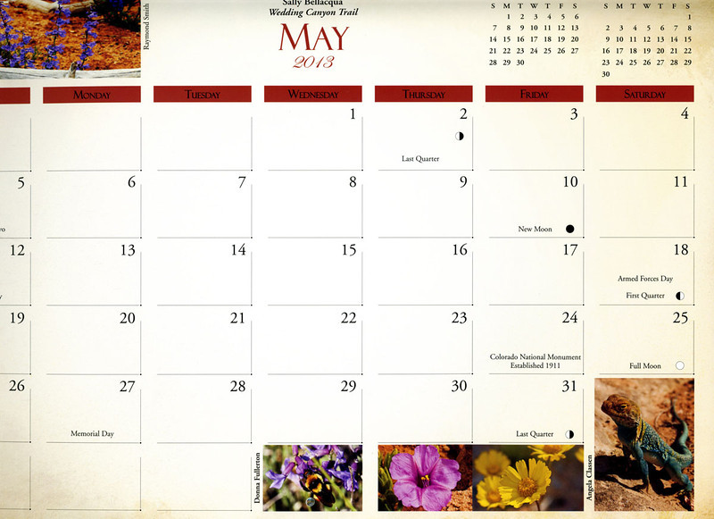 """Grid"" photos of wildflowers (magenta desert four o'clock and yellow perky sue) and a collared lizard published in 2013 Colorado National Monument calendar, published by the Colorado National Monument Association."