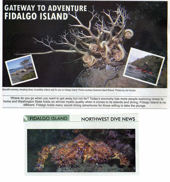NW Dive News, January 2009 issue.