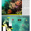 Northwest Dive News, May 2011. Deception Pass colors. Whidbey Island.