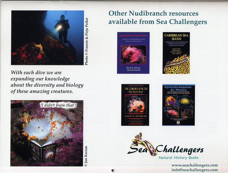 Nudibranch 2007 calendar. Published by Sea Challengers.