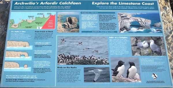 Three bird photos on information panel at Stack Rocks.