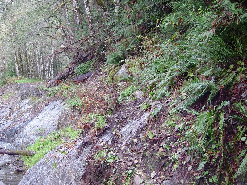 We reach the first washout on the Darrington end of the road.  This area is not possible to ride on the motorcycles.