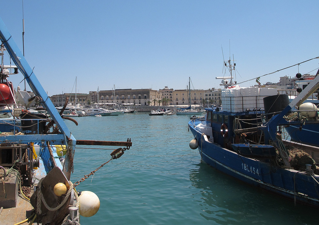 The port of Trani, with dozens of fishing boats moored.