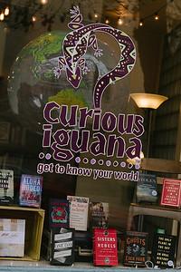 FIF_Curious_Iguana_Books_0027