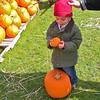 Pumpkin Pickin' - 13