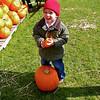 Pumpkin Pickin' - 14
