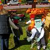 Pumpkin Pickin' - 04