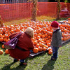 Pumpkin Pickin' - 15