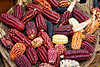 m332, Fig 7.5 ears of corn of different colors<br /> Choice 3 of 8<br /> <br /> <br /> High angle view of a basket of colored corns in a market stall, Pisaq, Cuzco, Peru