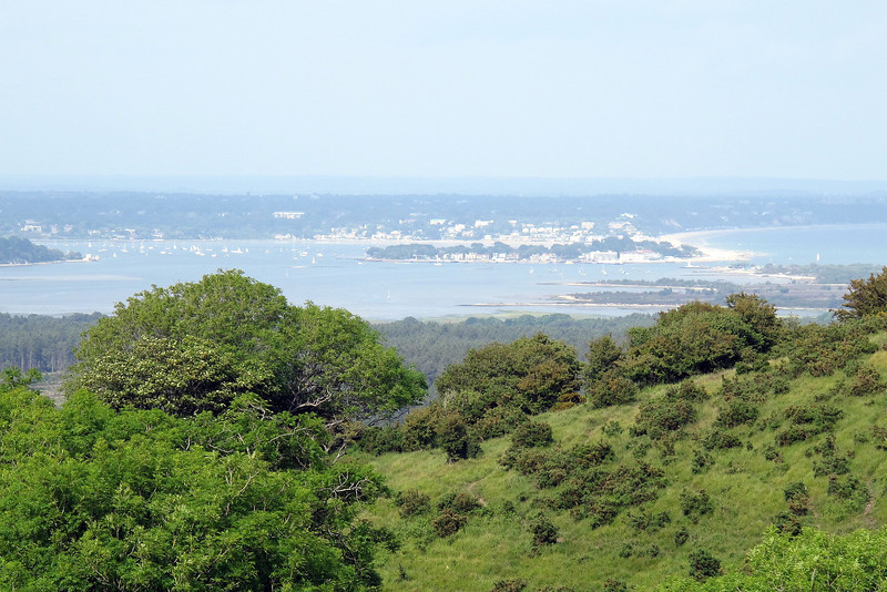 Sandbanks and Poole Harbour from Brenscombe Hill