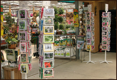 WHOLESALE  Photo Greeting Cards (individual) Photo Note Cards (boxed) - All Blank  I currently sell online and in numerous retail stores within Minnesota.  Please contact me for additional sales information regarding purchasing cards for resale in your store.  Email:  Janet@LSphotography Phone:  651-330-4988