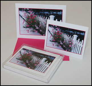 RETAIL  Greeting & Note Cards  -  Blank  Greeting Cards:  5.00* ea.   (5 x 7)  individually packaged.   Note Cards:  $14.00* pkg. of 6     (4 x 5 1/4)            6 cards/pkg.  (2 cards of 3 different images) OR you may select one photo and get 6 cards of that image.  You can order individual note cards @ $2.50 ea., there is a minimum of six cards.   All photos may be selected by you.  *Plus tax and shipping  All cards are printed on high quality card stock and are blank inside.  They come with white or color matched envelopes.  Each card is printed and hand-assembled by the photographer.   When ordering please specify Image # and Image name.  PAYMENT:  can be made with a personal check or U.S. Postal Service money order.  EASY ORDER:  Place orders by email or phone. Email:  Janet@LSphotography.com Phone:  651-330-4988  (Minnesota)