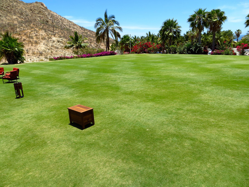 DRIVING RANGE_CABO REAL