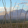 Rio Grande river valley, Las Cruces, NM and the Organ Mountains to the East.