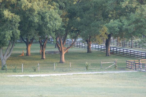 Quail Run Farm - Memorial Day '06
