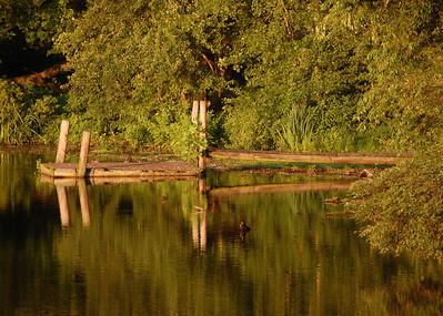 Wye Mill Pond Dock