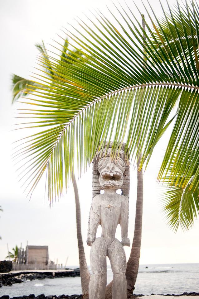 Hawaii_Spelman-6