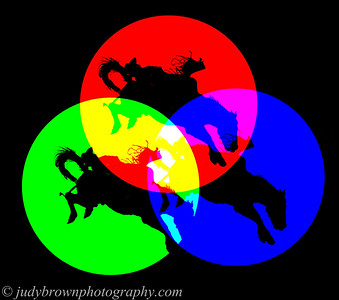 color circles with cowboy