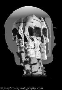 skeletonCubist-2-final2print copy