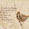 I Sing Because I'm Happy ...