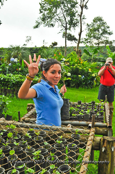 Explaining how to plant the coffee trees