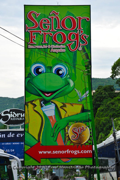 Frog store